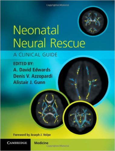 Neonatal Neural Rescue: A Clinical Guide 1st Edition