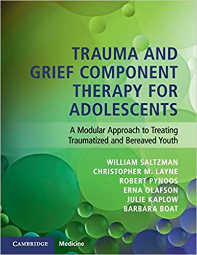 Trauma and Grief Component Therapy for Adolescents: A Modular Approach to Treating Traumatized and Bereaved Youth 1st Edition PDF